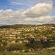 Постер, плакат: Tract Homes in San Clemente California
