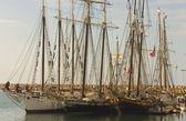 Three Tall Ships in Dana Point — Stock Photo