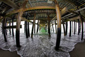 Under the San Clemente Pier — Stock Photo