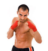 Portrait of young boxer fighter over white background — Stock Photo