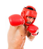 Top view of young Boxer fighter with boxing helmet and gloves over white background — Stockfoto