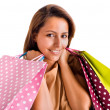 Portrait of a beautiful woman holding shopping bags, isolated on — Stock Photo #19934939