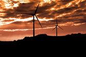 Windmills silhouette at sunset — Stock Photo