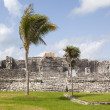 Ancient Mayan ruins of Tulum, Mexico — Foto Stock