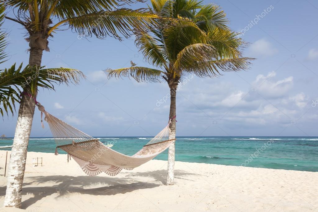Playa Con Cocoteros Y Hamaca Foto De Stock Cristovao