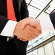 Closeup picture of businesspeople shaking hands, making an agree — Stock Photo #9360380