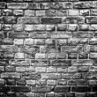 Brick wall background or texture — Stock Photo #19114439