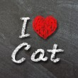 I love Cat handwritten with white chalk — Stock Photo #30533807