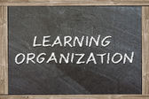 Learning organization — Stock Photo