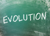 Evolution on a greenboard — Stock Photo