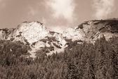 Mountain — Stockfoto