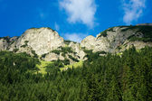 Mountain — Stok fotoğraf