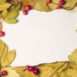 Paper on autumn leaves — Stock Photo #33750647