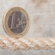 Euro entangled in a rope — Stock Photo
