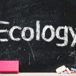 Ecology — Stock Photo #38520553