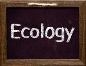 Ecology — Stock Photo