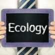 Ecology — Stock Photo #38931905