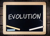 Evolution on a blackboard. — Stock Photo