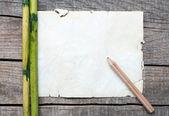 Blanco papier — Stockfoto