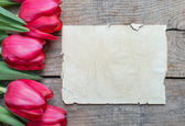 Tulips and paper with copy space — Stock Photo