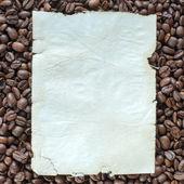 Observera på kaffebönor — Stockfoto