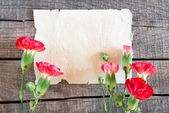 Sheet of notebook and red and white carnations flowers — Stock Photo