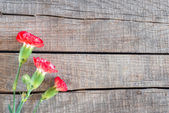 Red and white Carnations flowers on rustic brown wooden table — Stock Photo