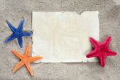 Sea star and a white card — Stock Photo