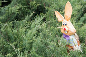 Rabbit toy against fir-trees — Stock Photo