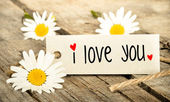 我爱你 — 图库照片
