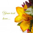 Decoration for greeting card from the lily — Stock Photo #8706415