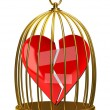 Stock Photo: Broken heart in the cage