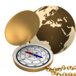 Globe Icon: Navigation — Stock Photo