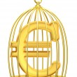 Sign euro in a cage — Stock Photo