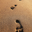 Footprints on sand of sea beach. Summer walk — Stock Photo