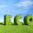 ECO text  on grass field. Ecology concept 3D — Stock Photo