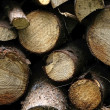 Pile of old firewood background - Stock Photo