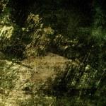 doku — Stok fotoğraf