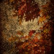 Stock Photo: Rust Texture, Rusty Background