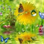 ������, ������: Riverside Nature
