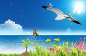 Flying Free, Feeling Free — Stock Photo