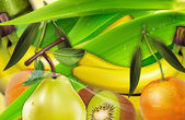 Colorful Healthy Fruits For You — Stock Photo