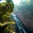 Khaoyai National Park — Stock Photo