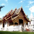 Wat thai — Stock Photo #20531817