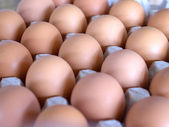 Chicken eggs in egg tray — Stock Photo