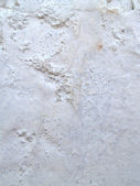 Texture of concrete background — Stock Photo