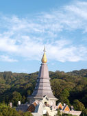 Travel Doi Inthanon national park of Thailand — 图库照片