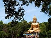 Buddha Utthayan and Phra Mongkhon Ming Mueang , Amphoe Mueang Amnat Charoen , thailand — Stock Photo