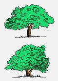 Vector árboles con hojas — Vector de stock