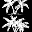 Palm tree Tropical palm trees, black silhouettes background  — Stock Vector